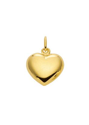 hanger 2 stuks goud 333/gg hart