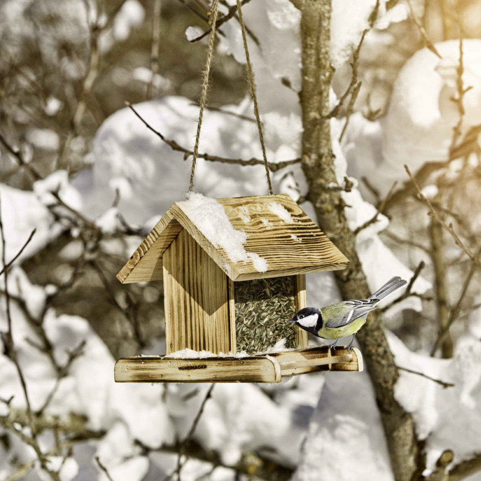 Vogelhaus - Futtersilo