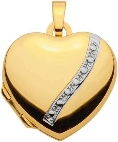 medaillon goud 333/rh hart