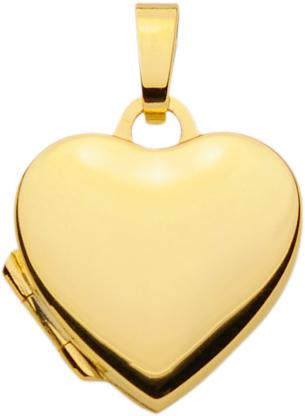 medaillon goud 333/gg hart